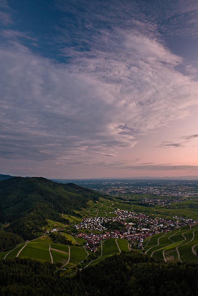 Vineyards Cloudscape
