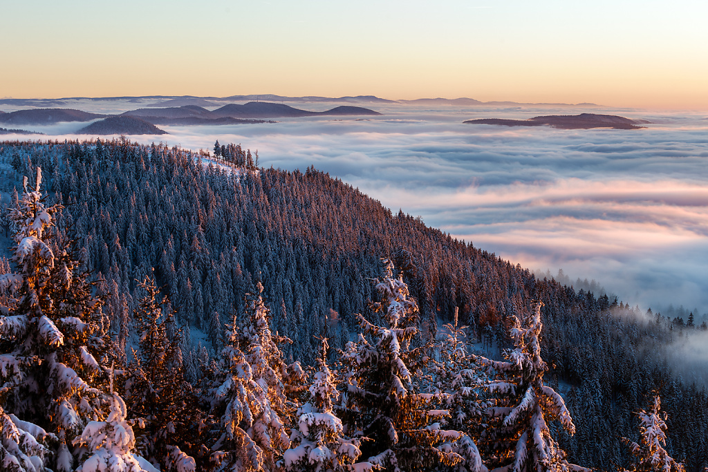 Inversion on New Years Day